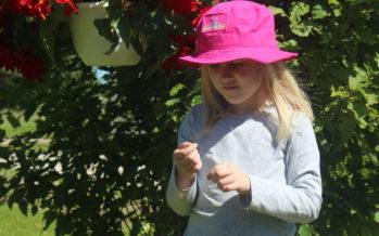 Osaatko hoitaa lapsen kesähaavat oikein?
