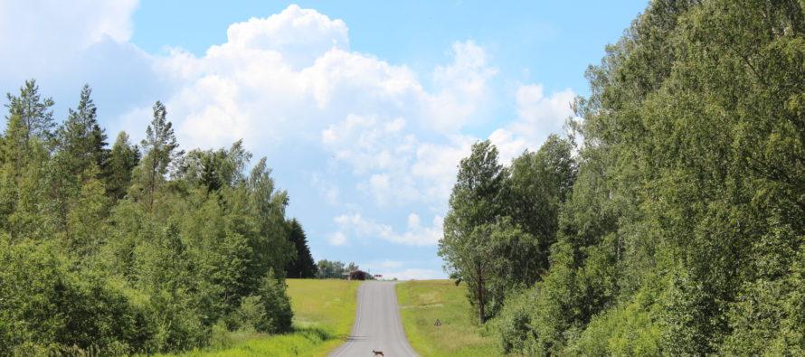 Helena-Reet: Loma (vol 2) – Ruudiküla Viljandissa