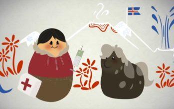 Uusi Info Pohjola -palvelu tarjoaa lisää hyödyllistä tietoa Pohjoismaista