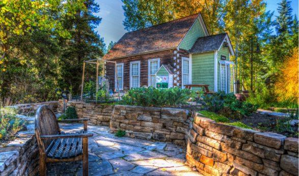 Istuta nämä kasvit puutarhaasi, niin olet kesällä hyttysistä vapaa + KUVAT!