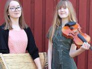 Virolainen kansankulttuuri: MISSÄ voi opiskella, KANSANKULTTUURIN alaa koskeva tietokanta sekä luettelo yhdistyksistä