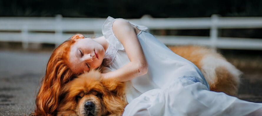 TUTKIMUS: KOIRAN KANSSA vuoteessa nukkuminen takaa paremman unen