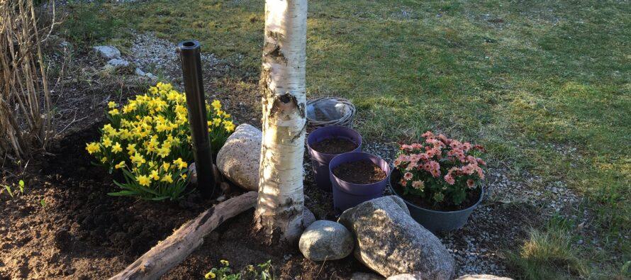 Helena-Reet: Äitienpäivä + toukokuun puuhia puutarhassa